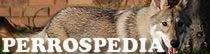 perrospedia.com